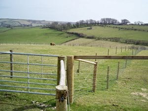 Fencing and Farm Layout